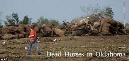 Dead Horses Oklahoma