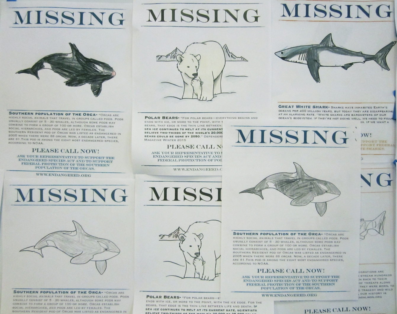 Missing Species Reports