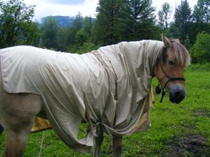 """ok. ok I think I need a new fly sheet"""