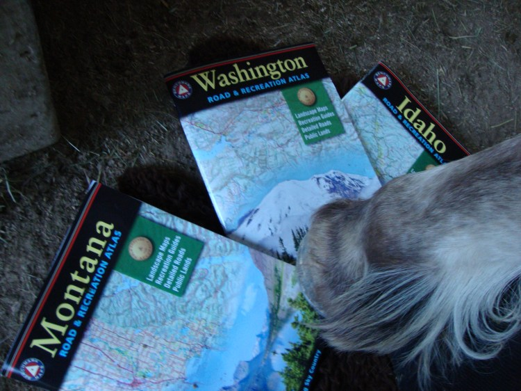 "Montana Spirit simply cannot keep her hoof off my Benchmark Maps.""Lets go to Washington, she says..Ok, Ok"""