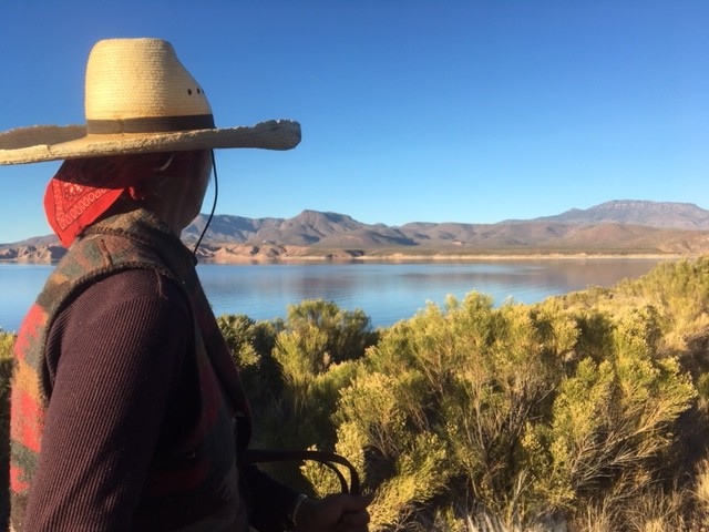 overlooking Roosevelt Lake north of Globe AZ.