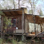 """My tiny """" Thraou cabin"""" in the woods."""