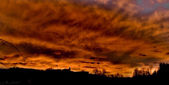Morgenröte am Hornwald