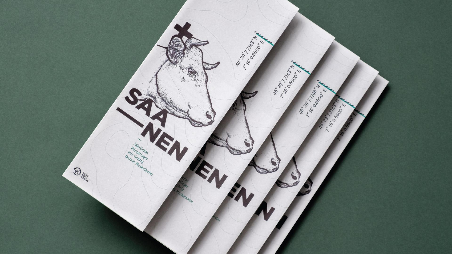 Endformat Designstudio. Design in Konstanz am Bodensee-Saanen Pfingstlager-Wushu Taichi Akademie-Event Design