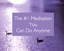 The #1 Meditation You Can Do Now