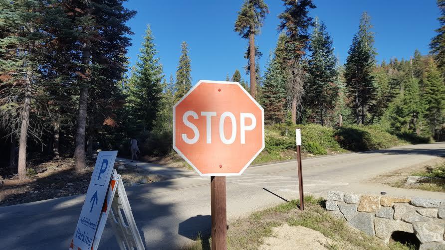 STOP sequoia