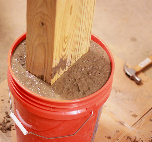 Cement-Setting