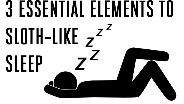Three Essential Elements to Sloth-Like Sleep
