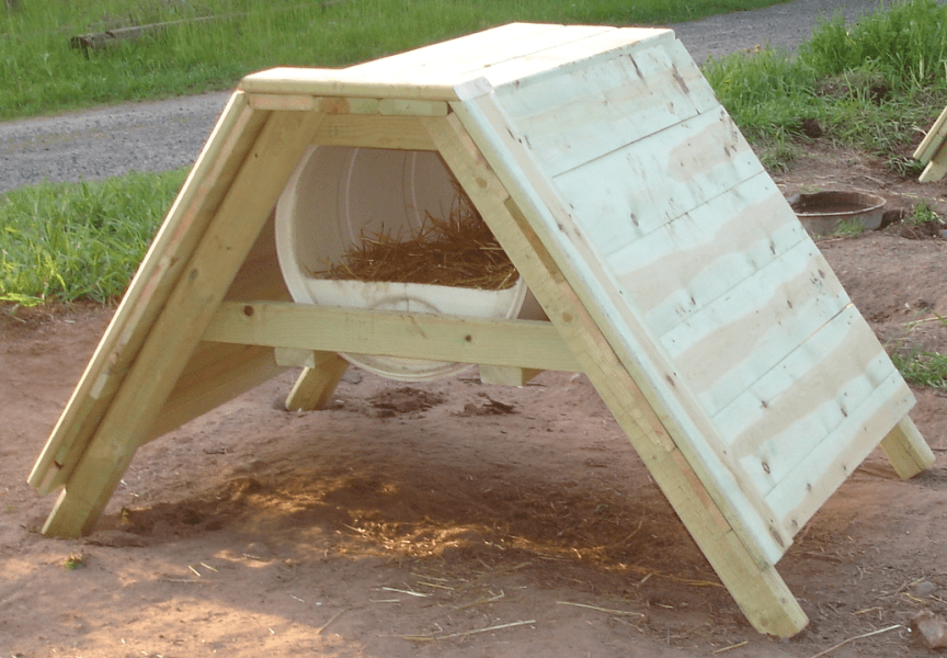 How to Build a Sled Dog House   Plans Materials Design Video   A     how to build a sled dog house 55 gallon barrel diy