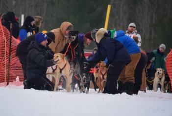 Kalkaska Winterfest 2015 - Photo by Kaitlyn Tidwell