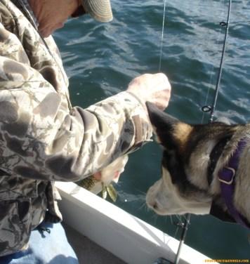 Toivo loves to go fishing