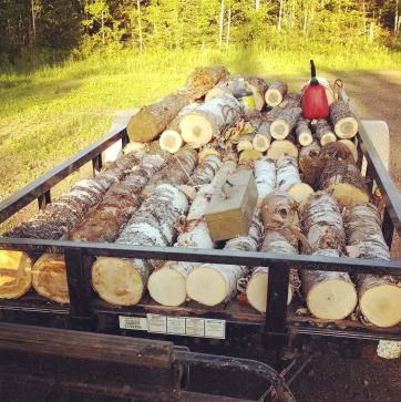 loggers cord firewood birch maple