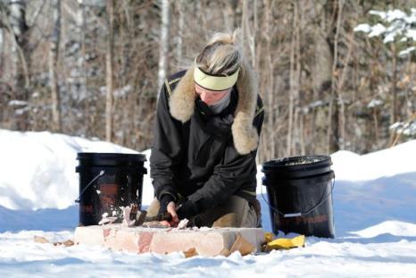 frozen meat sled dog food paleo raw