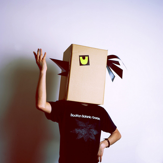 Vogel Karton-Kostüm-Idee