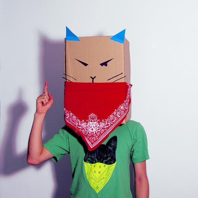 Katze Karton-Kostüm-Idee