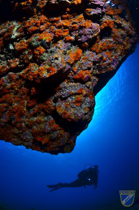 XV Copa Cabildo de Fotografía Submarina 2012 - Sacha Lobenstein Recio, AC - Ambiente con modelo