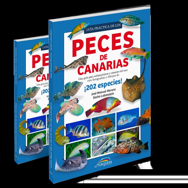Ya a la venta nuestra Guía práctica de los Peces de Canarias es dos formatos: de Bolsillo o Din-A5