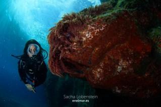 20151102-1154-SachaLobenstein-enelmar.es-Punta Prieta - El Espigon