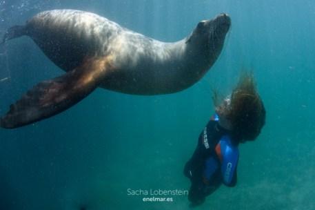 20160531-1234 - Sacha Lobenstein - enelmar.es - Oceanarium Explorer