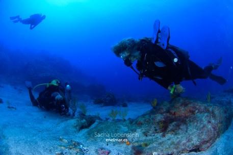20171015-1105-SachaLobenstein-enelmar.es-Gorgonias del Faro