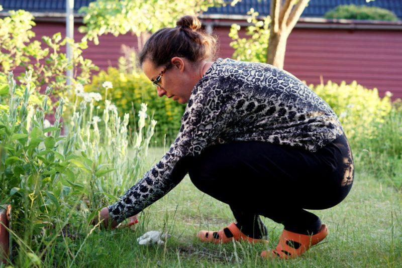 enemilia i trädgården inlägg om hälsoregler