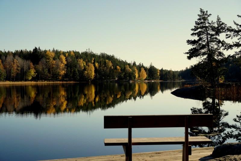 känna lycka för hösten och naturen