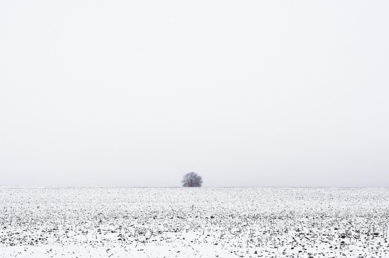 Neve d'amianto