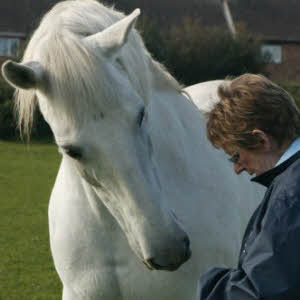 Jan Moore and Voto, her Andalusian Gelding