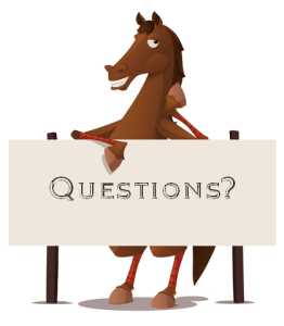 Questions for Energetic Horsemanship?