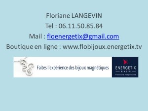 Energetix carte de visite Blog