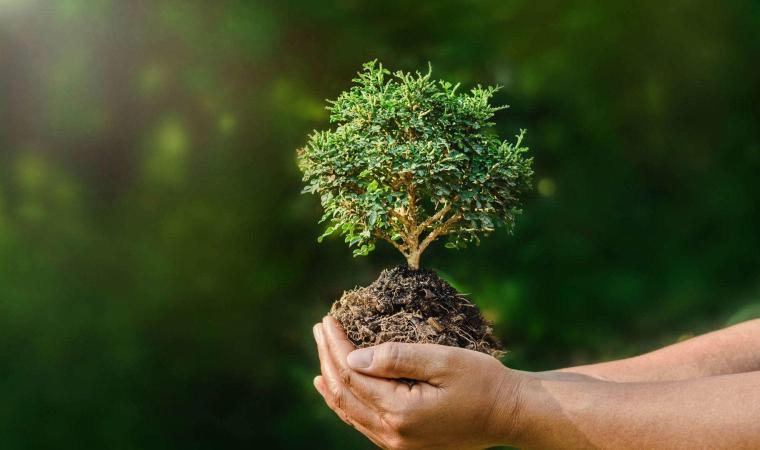 Norme ambientali italiane: 80% di provenienza europea