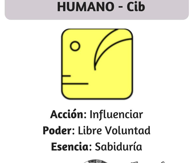Humano Cristal Amarillo-kin 12