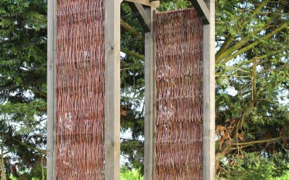 pergola bois plante grimpante