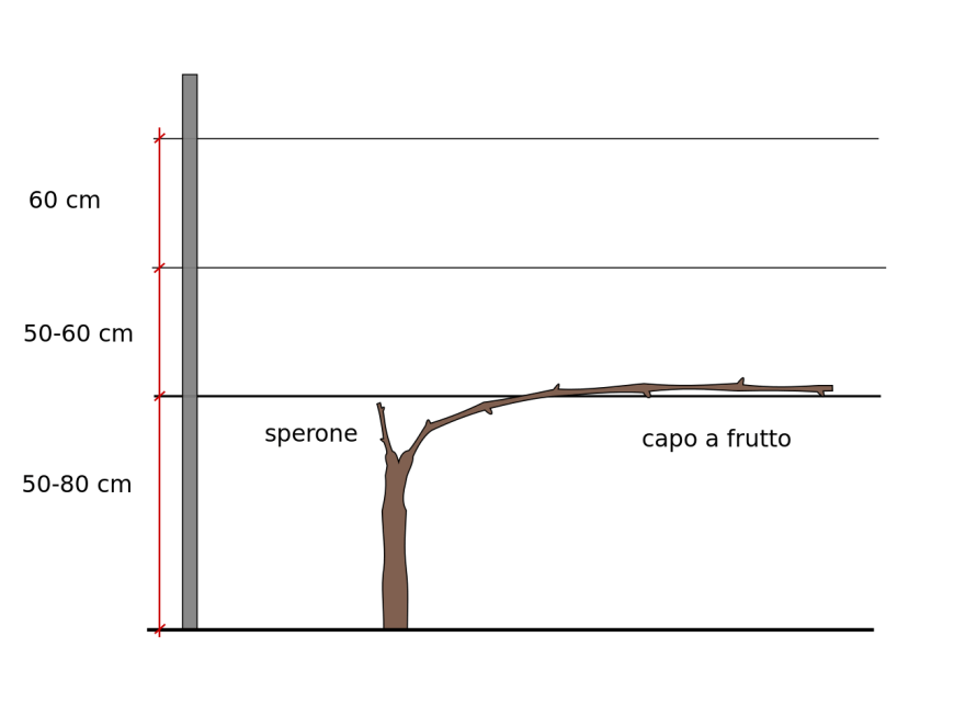 Comment construire une pergola en bois plan ?