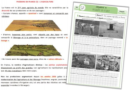 france agricole annonce