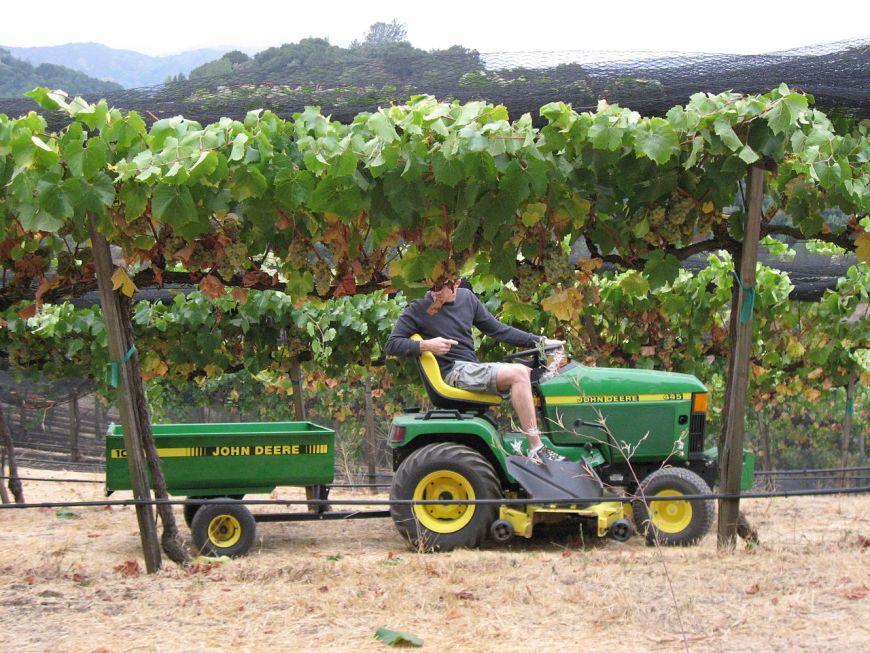 tracteur vigneron