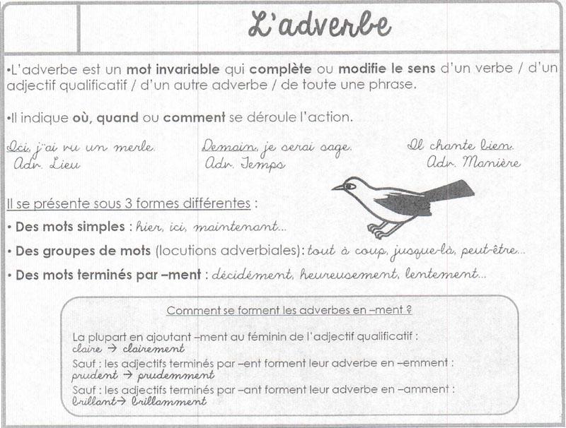 cher adverbe