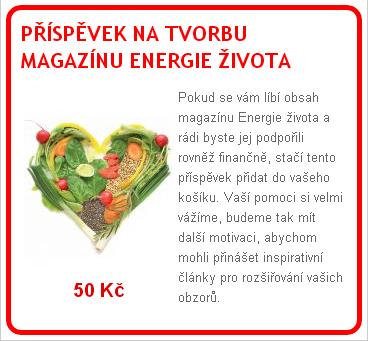 magazin - Kolik sníst syrové stravy a kvašených potravin