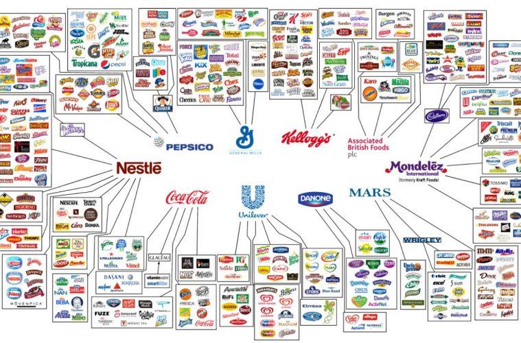 pavouk - Kdo vlastně vládne trhu spotravinami?