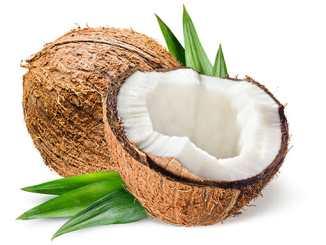 Kokosový olej zabíjí bakterie, viry, kvasinky
