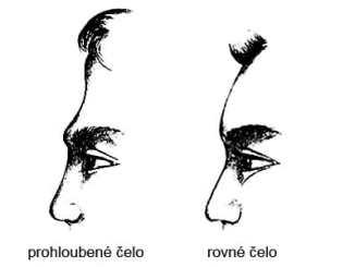 60c3968c304d4642e130d0fda8d2a5d1 - Osobnost se pozná i podle tvaru čela z profilu