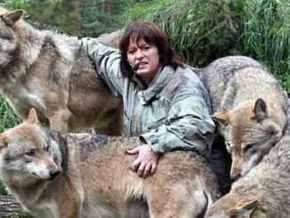 53f73f8cd837c4922480e434a19cfb7d - Žije s vlky. Povídá si a cítí s nimi. Tanja Askani