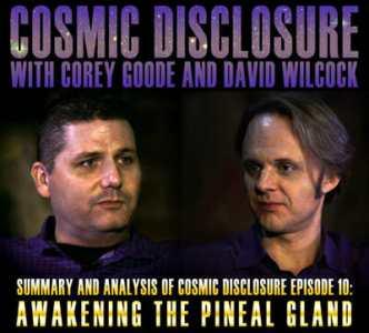 David Wilcock, Corey Goode