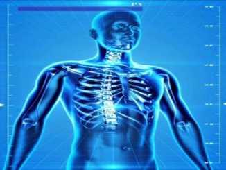 aa93aec16dce9c2286f55db9465426ba - Vědci díky DNA osvětlují paranormální jevy (1)