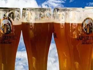 cf2e4617e24f8e03ea02342149f8e6e7 - Chmel v pivu chrání proti Alzheimerově chorobě