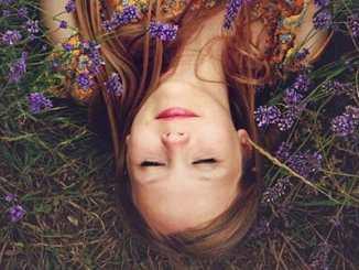 46e15c020316a351047c0ab8c260a715 - Deset rostlin do ložnice pro lepší spánek