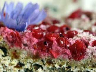 1bce018cb32675e12bcea8182cee45e5 - Recept na skvělý nepečený rybízový dort