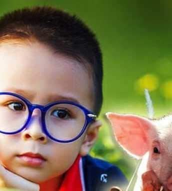 Veganské stravování dětí  Ano či ne   bfcde1d6cf