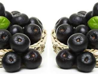 Acai berry. 5 důvodů, proč je konzumovat.