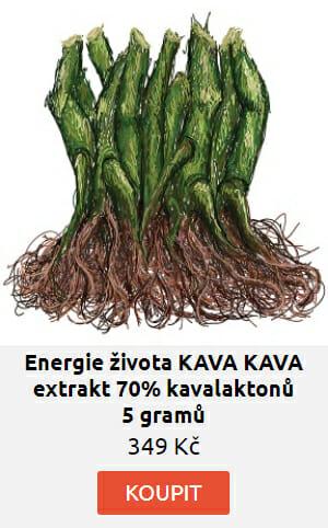 KAVA KAVA pepřovník extrakt 70% kavalaktonů 5 gramů